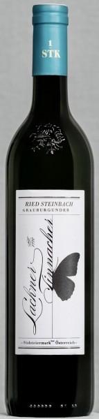 Grauburgunder Steinbach 2020 DAC erste STK Lage Bio